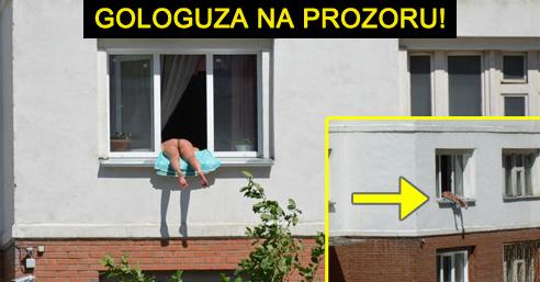 Gologuza-na-prozoru